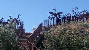 gaviota reidora en la Laguna de Fuente de Piedra